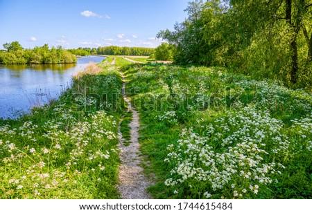 Summer rural river shore path view
