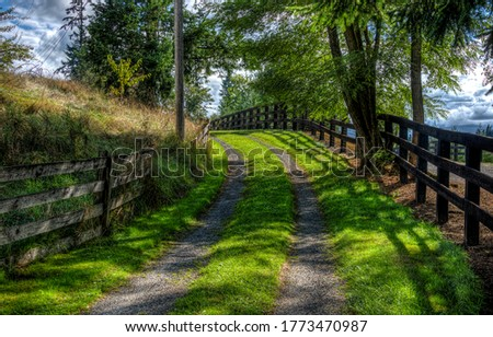 Summer rural road view with fences. Rural road fence