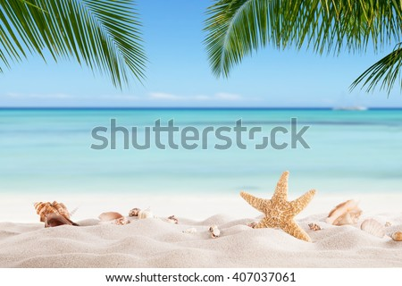 Stock Photo Summer sandy beach with blur ocean on background