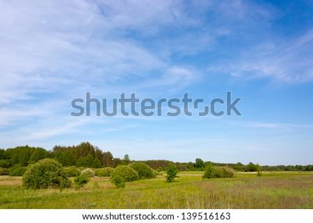 Summer scene in steppe, Ukraine