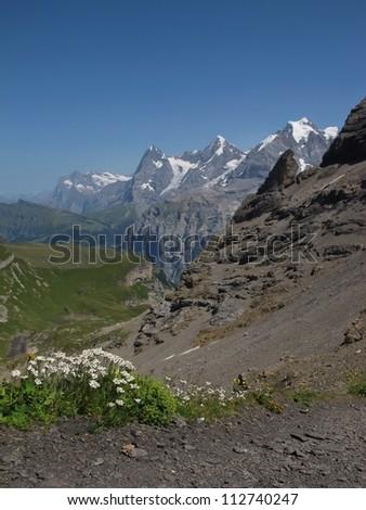 Summer Scene In The Bernese Oberland