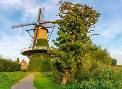 Summer scenery with traditional dutch windmill De Arend from 1742 in the village of Terheijden, North Brabant, next to the old pear tree