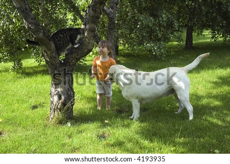 summer scenic. cat, dog, tree and sweet girl