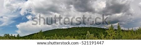 Summer sky. Amur Region. Russia. #521191447