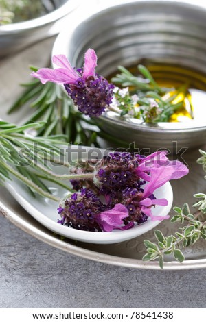 Summer still life showing lavender, oil, rosemary and thyme.