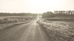 Summer sunny landscape with empty country asphalt road passing through the fields and forest.Photography made with sepia filter in retro style.