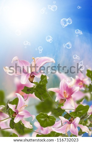 Summer sunny nature.Exotic flowers