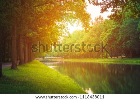 Stock Photo summer sunny river in the park