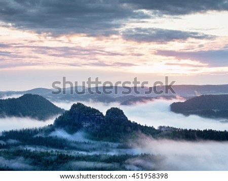 Summer sunrise forest after heavy rain. Beautiful mountain within inversion. Treetops increased from foggy background. Vivid effect. - Shutterstock ID 451958398