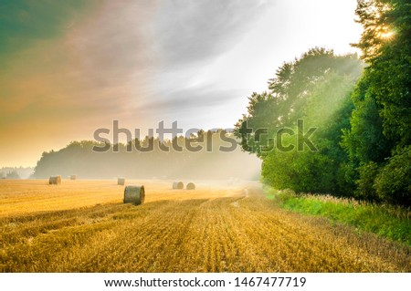 Summer sunrise view on harvested field with straw bales in the Bohemina Paradise, Czech Paradise #1467477719