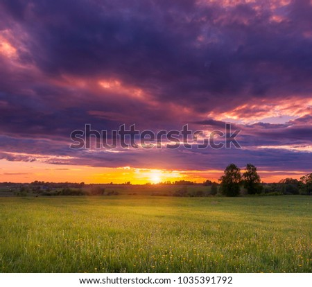 Summer sunset on the field with very beautiful light and sky #1035391792