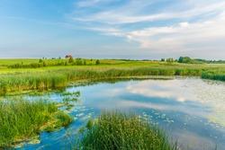 Summer sunset over rural pond or overgrown lake