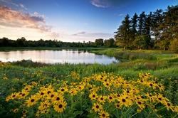 Summer Sunset. Sunset light on Meadow Lake at The Morton Arboretum, Lisle, Illinois.
