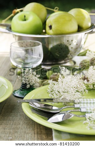 stock photo : Summer table setting
