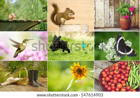 stock-photo-summer-themed-collage-147614903.jpg