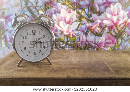 Summer time concept. Old alarm clock against a beautiful blossoming magnolia tree. #1282551823