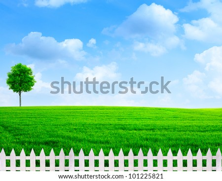 summer time outdoor rural view with white fence