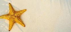Summer tropical beach background; beach travel