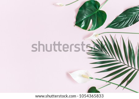 Summer tropical composition. Green tropical leaves and white flowers on pastel pink background. Summer concept. Flat lay, top view, copy space