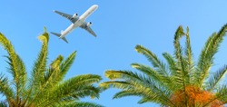 Summer vacation and travel concept. Airplane flying over tropical palm tree on clear blue sky background.