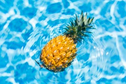 Summer vacation concept, fresh pineapple swims in swimming pool at the hotel. Holiday, healthy eating, tropical concept