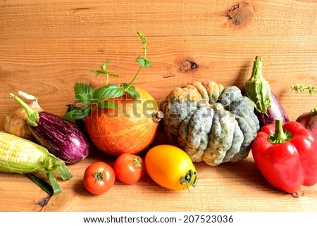Summer vegetables with herbs #207523036
