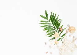 Summer vibes. Tropical palm leaf, seashells and starfish. Flat lay, top view
