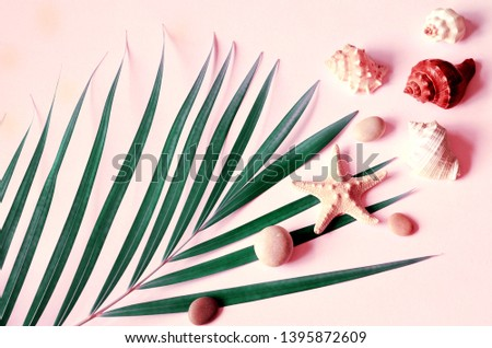 Summer vibes. Tropical palm leaf, seashells and starfish. Flat lay, top view. Pink summer background. Summer concept.
