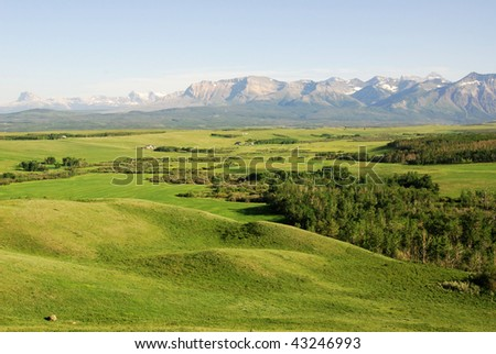 Summer view of meadows, forests and mountains in waterton lakes national park, alberta, canada
