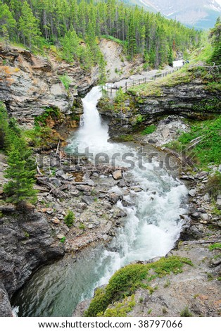 Summer view of mountain creek and blakiston falls in waterton lakes national park, alberta, canada