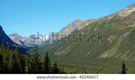 Summer view of rocky mountains and forests in jasper national park, alberta, canada