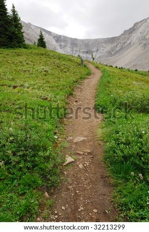 Summer view of winding hiking trail on alpine meadows at ptarmigan cirque, kananaskis country, Alberta, Canada