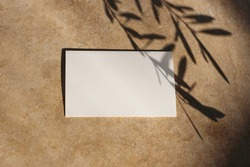 Summer wedding stationery mock-up. Blank business card, invitation at sunset. Dark olive leaves silhouette. Tree branch shadow overlay. Golden marble background. Flat lay, top view. Vacation concept.