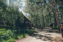 summer wooden house in a birch grove. camping in the woods. tourist base for travelers ' recreation. eco-friendly construction
