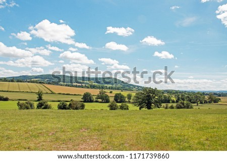 Summertime countryside in the Herefordshire countryside of England.