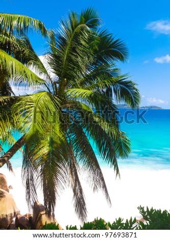 Summertime Panorama Sea