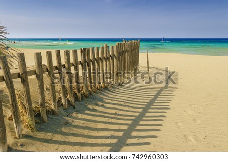 Summertime.The Regional Natural Park Dune Costiere (Torre Canne): fence between sea dunes. (Apulia)-ITALY- The park covers the territories of Ostuni and Fasano along eight kilometers of coastline. #742960303