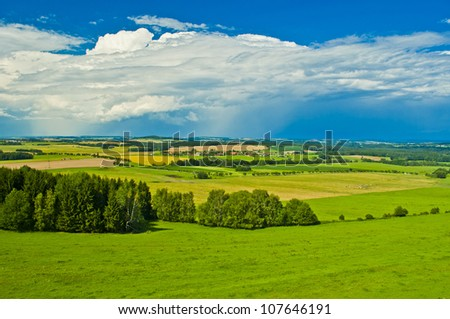 summery landscape - stock photo