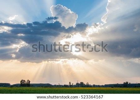 Sun and clouds over corn fields #523364167