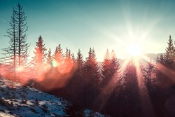 Sun and glare in winter mountains