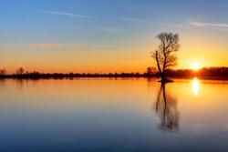Sun and tree in lake