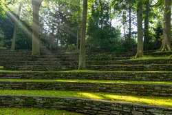 Sun beams shine through the trees at Scott Outdoor Amphitheater in Crum Woods at Swarthmore College, Pennsylvania, USA