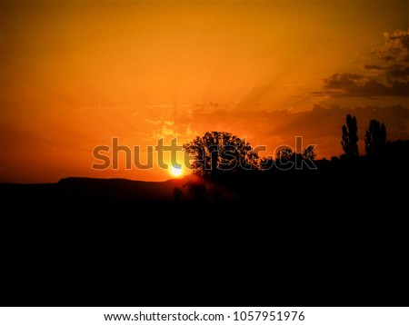 Sun comes up right behind the hills in front of a perfect shaped tree