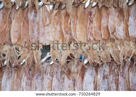 Sun dried squids #750264829