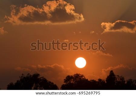 SUN Effect #695269795