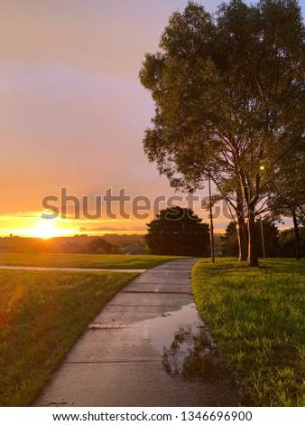 Sun glistening on a path