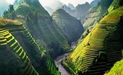Sun light on terraces rice fields. rice fields in Northwest of Vietnam.