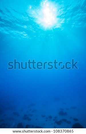 sun light underwater
