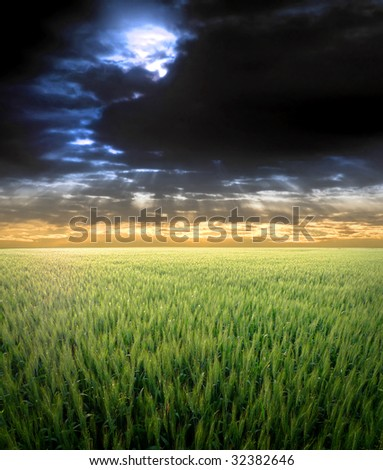 Sun peeking from stormy clouds over a green wheat field