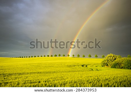 sun, rain and two rainbows over the field